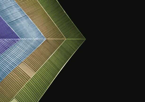 Featured Article Picture